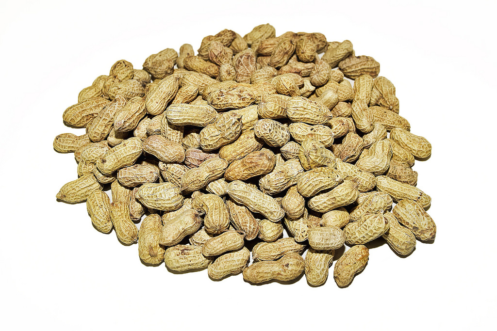 Groundnuts Image source -- https://www.flickr.com/photos/25802865@N08/16681915059/sizes/l