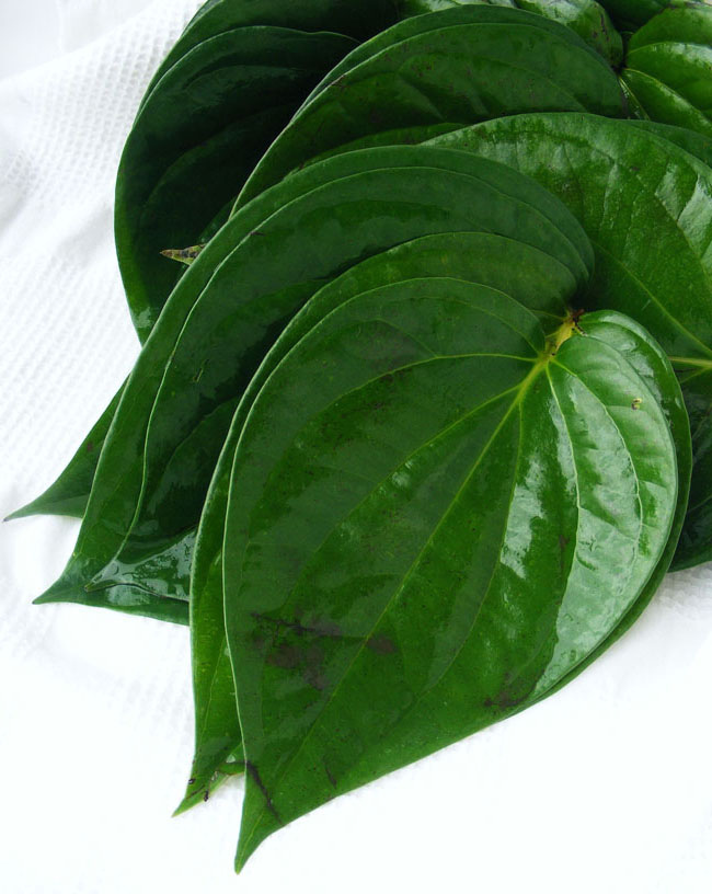 Betel leaves Image source -- https://www.flickr.com/photos/fotoosvanrobin/6192503304/sizes/l